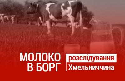 Maket_korovi